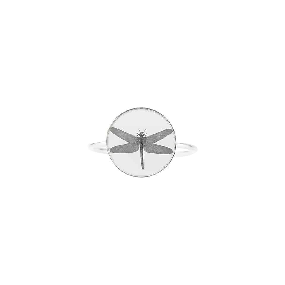 basic-dragonfly