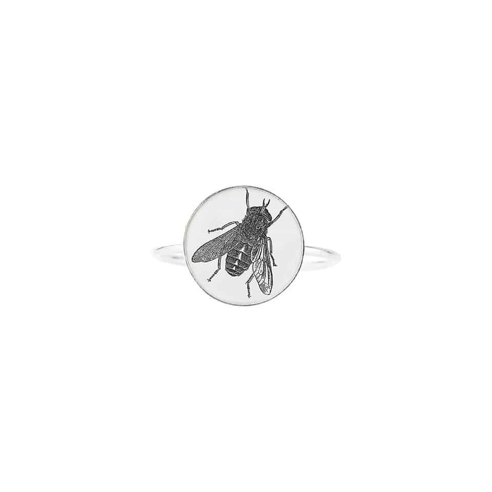 basic-fly