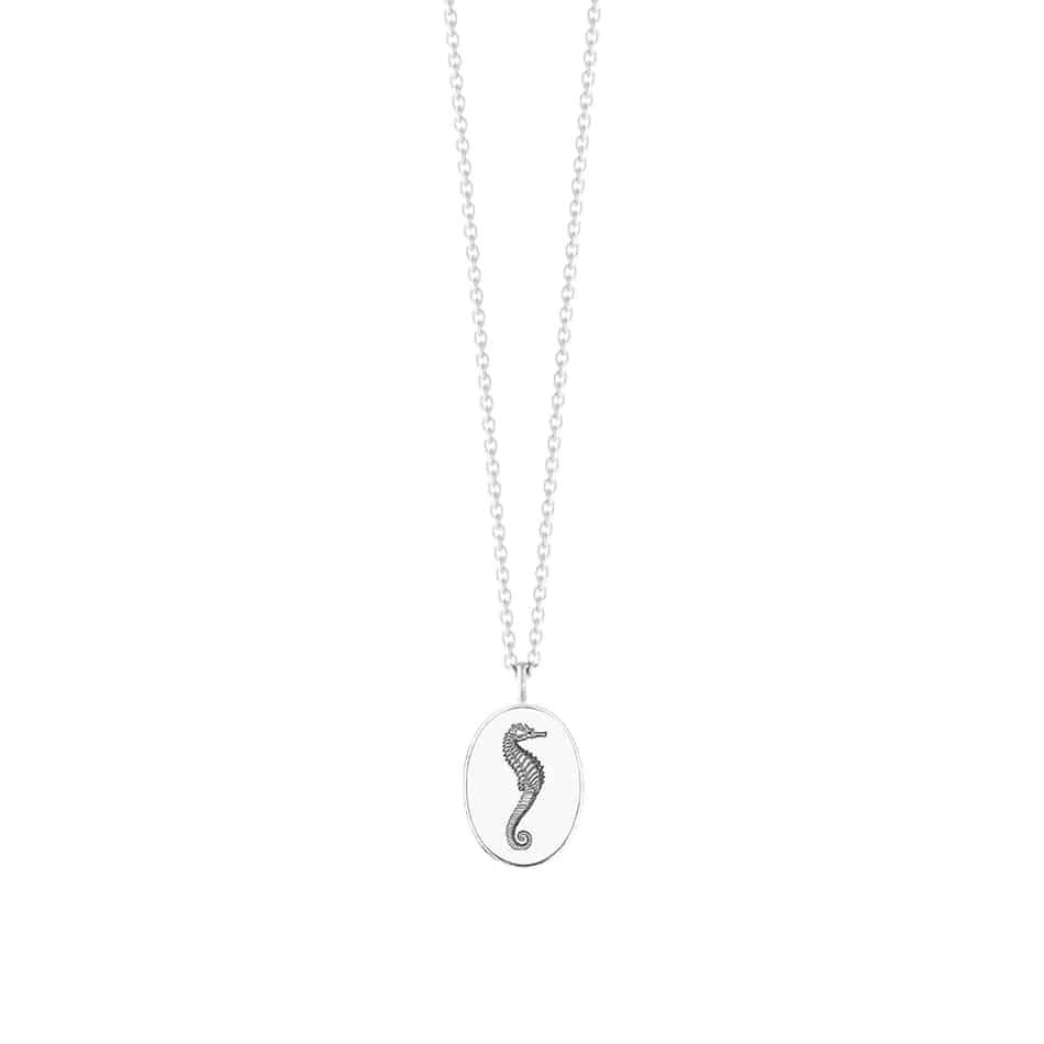 pendant-oval-seepferd